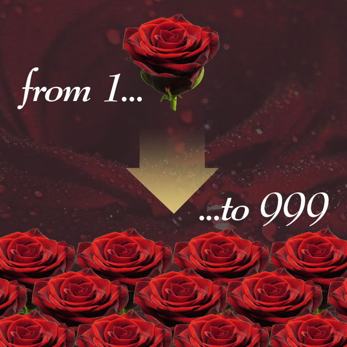Buy from 1-999 Roses Online