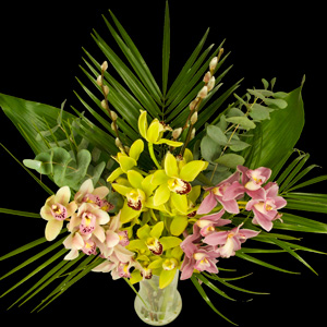 Example of a Extra Luxury Bouquet of Cymbidiam Orchids