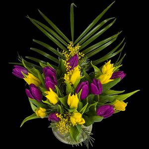 Example of a Luxury Bouquet of Tulips