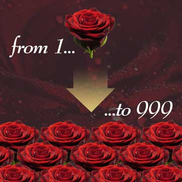 Order from 1-999 roses