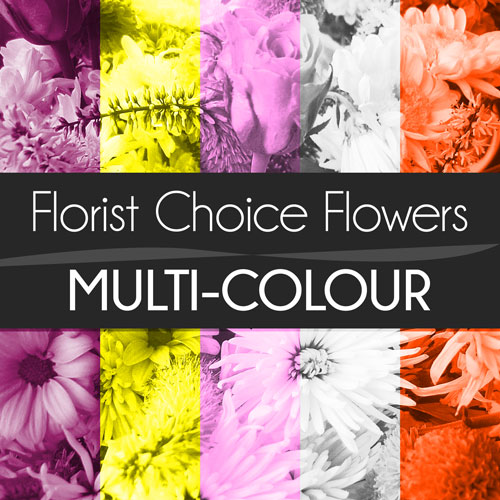 Multi-Colour Florist Choice Bouquet