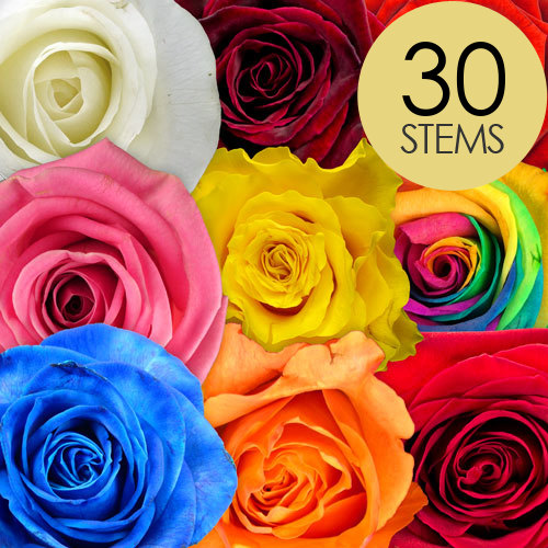 30 Rainbow Mix Roses handtied into Extra Luxury Bouquet