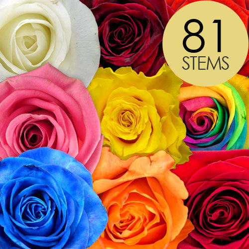 81 RAINBOW MIXED Roses handtied into a Luxury Bouquet