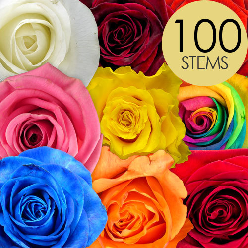 100 RAINBOW MIX Roses handtied into a Luxury Bouquet