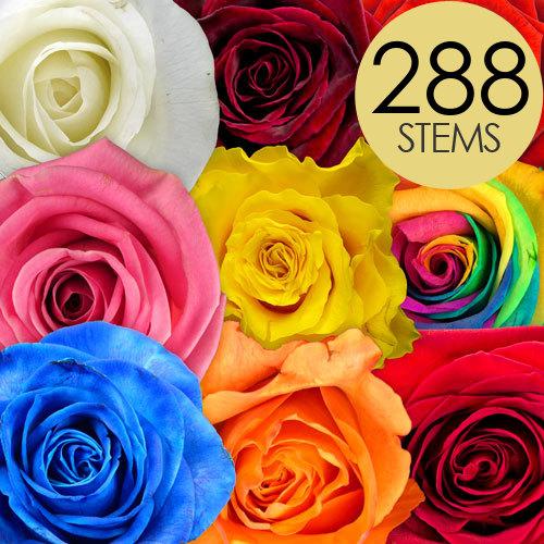 288 Rainbow Mix Bulk Roses