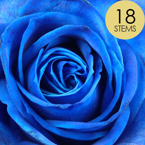 18 Blue Roses