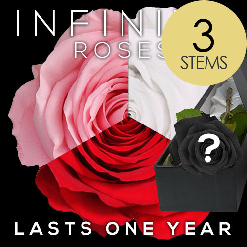 3 INFINITY Luxury 2 RED & 1 PINK Roses