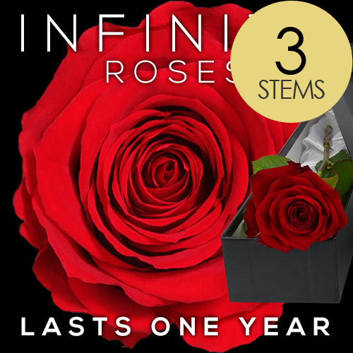 3 INFINITY Luxury RED Roses