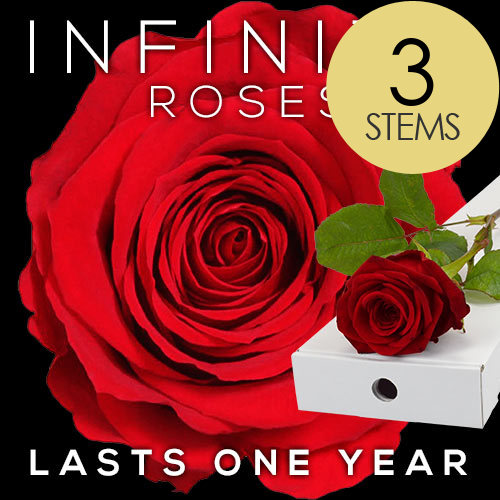 3 INFINITY Letterbox RED Roses