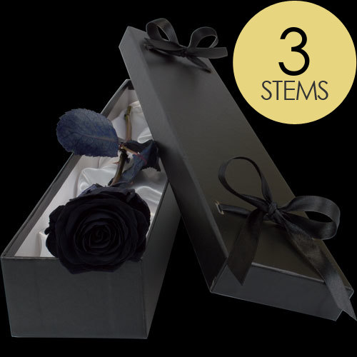 3 Luxury Black (Dyed) Roses