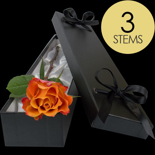 3 Luxury Orange Roses