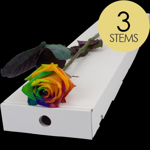 Buy happy rainbow roses online with free delivery from for Where to buy rainbow roses