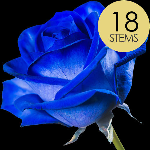 18 Blue (Dyed) Roses