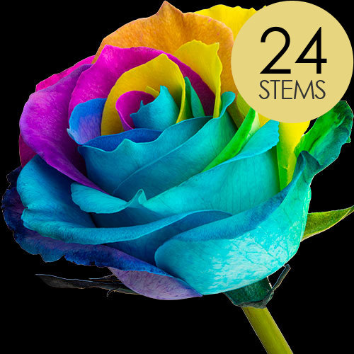 24 Happy (Rainbow) Roses