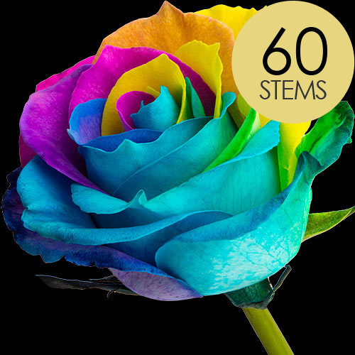 60 Happy (Rainbow) Roses