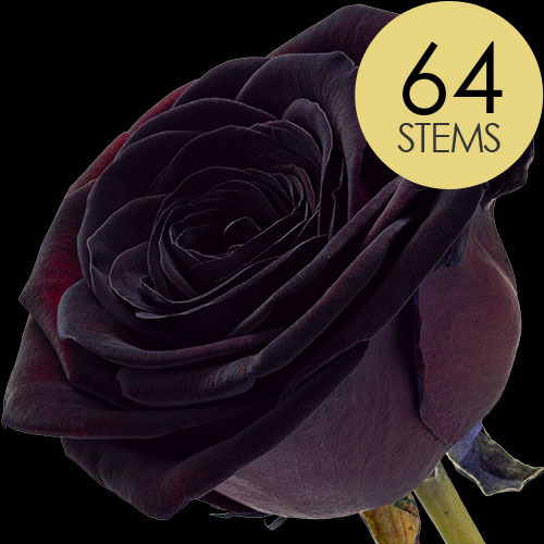 64 Luxury Black Roses