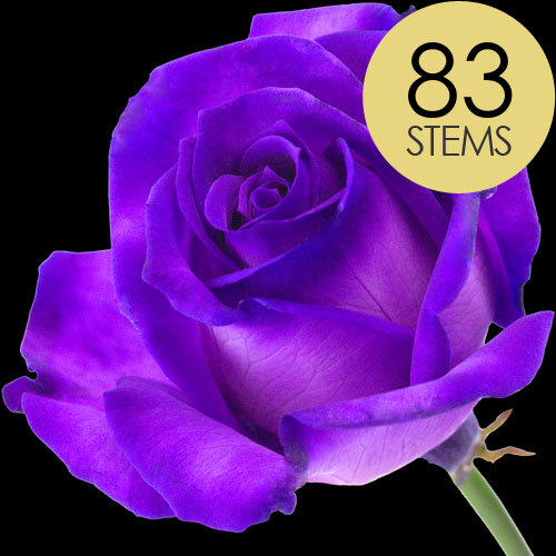 83 Luxury Purple Roses