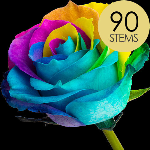90 Happy Rainbow Roses