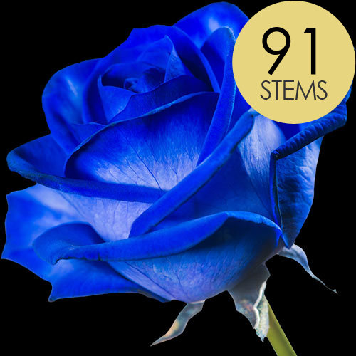 91 Blue (Dyed) Roses