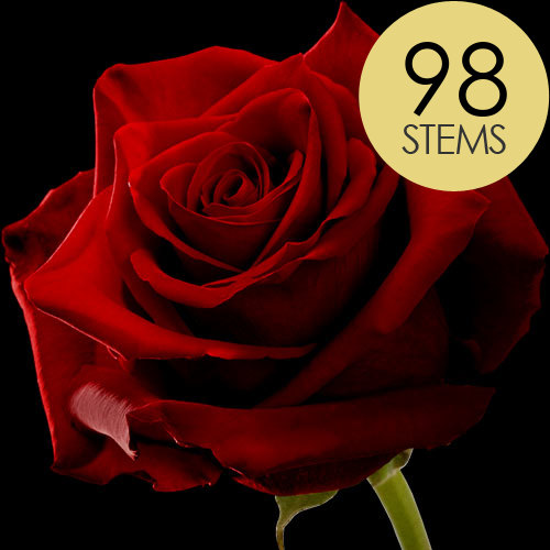 98 Luxury Large Headed Red Naomi Roses
