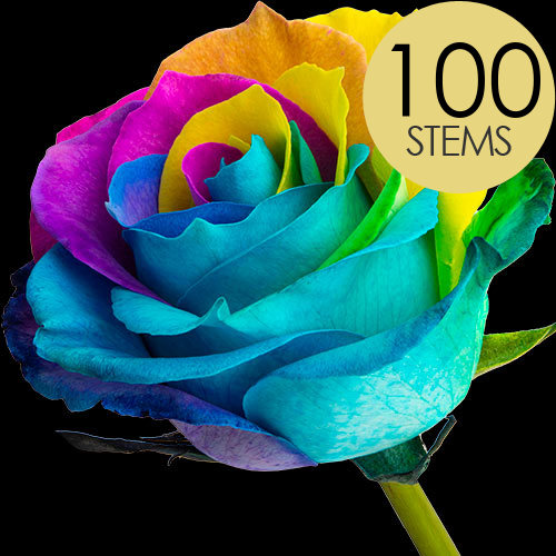 100 Happy (Rainbow) Roses