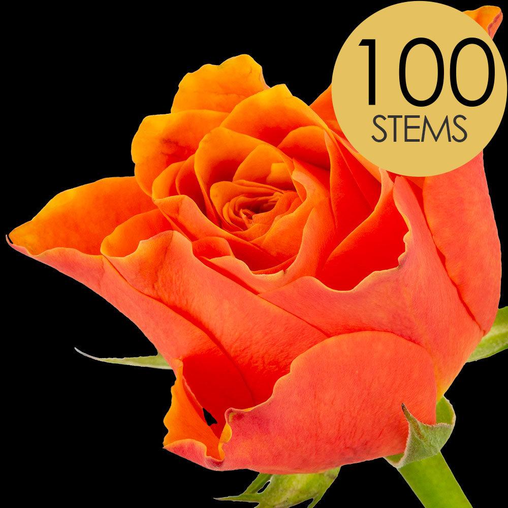 100 ORANGE Roses handtied into a Luxury Bouquet