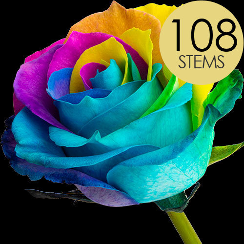 108 Wholesale Happy (Rainbow) Roses