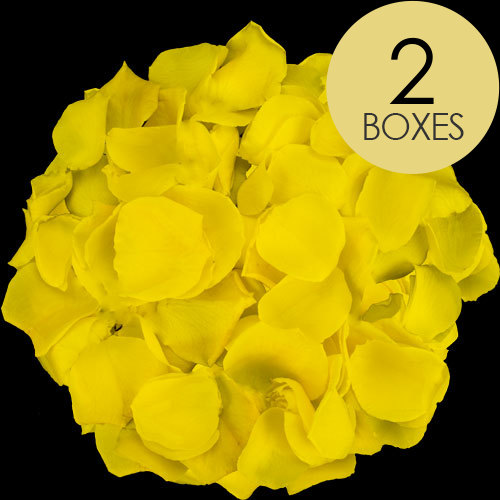 2 Boxes of Yellow Rose Petals