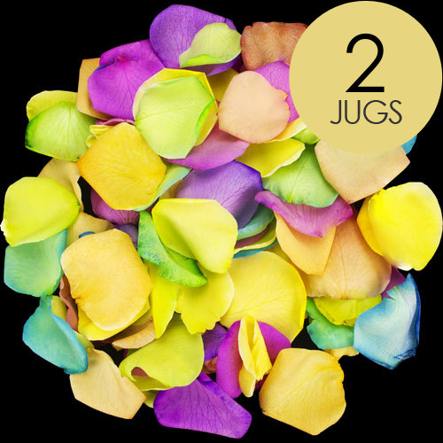 2 Jugs of Happy Rainbow Rose Petals