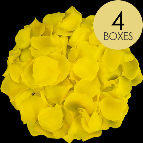 4 Boxes of Yellow Rose Petals