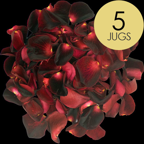 5 Jugs of Black Baccara Rose Petals