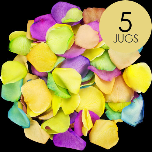5 Jugs of Happy Rainbow Rose Petals