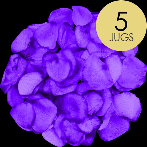 5 Jugs of Purple Rose Petals