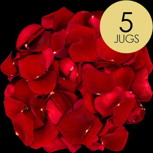 5 Jugs of Red Rose Petals