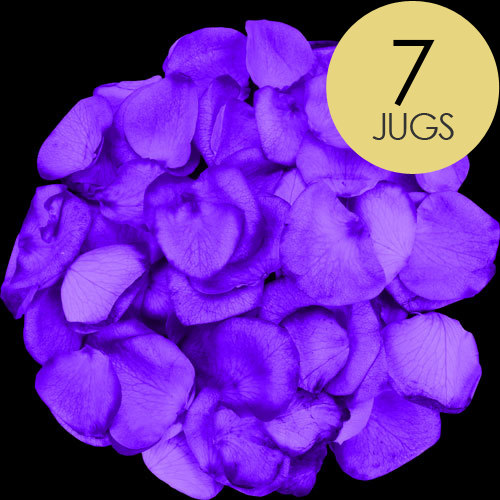 7 Jugs of Purple Rose Petals