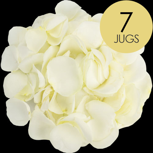 7 Jugs of White Rose Petals
