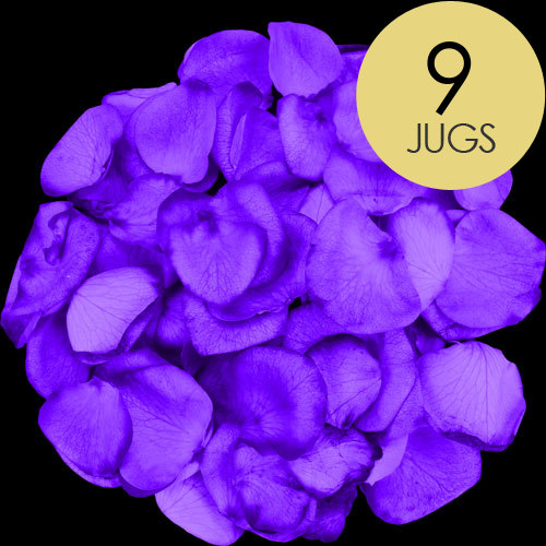 9 Jugs of Purple Rose Petals