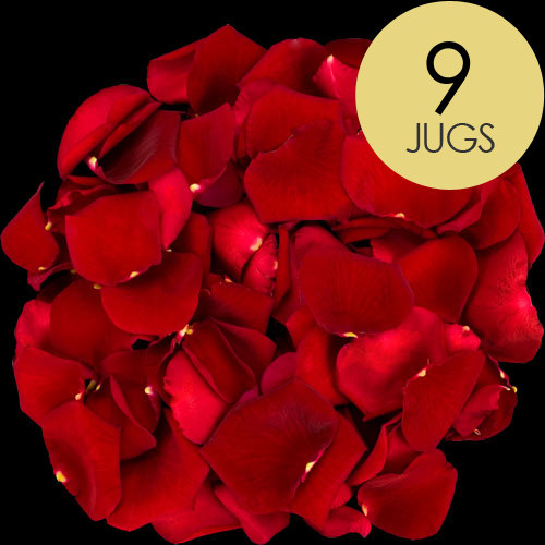 9 Jugs of Red Rose Petals