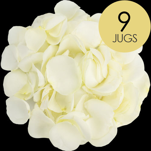 9 Jugs of White Rose Petals