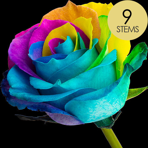 9 Happy (Rainbow) Roses