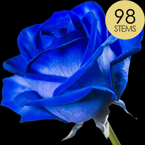 98 Blue (Dyed) Roses