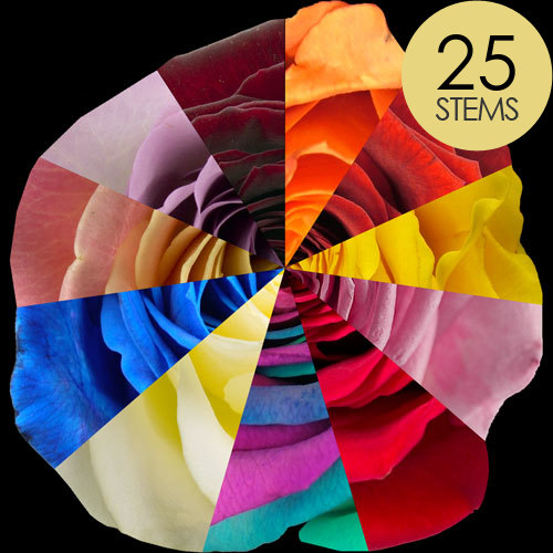 25 Special Offer Rainbow Roses