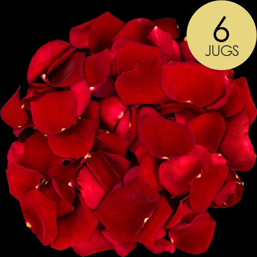 6 Jugs of Red Rose Petals