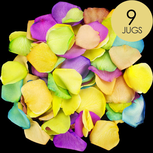 9 Jugs of Happy Rose Petals