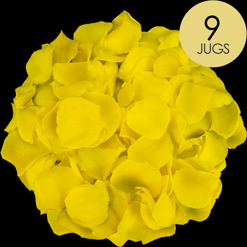 9 Jugs of Yellow Rose Petals