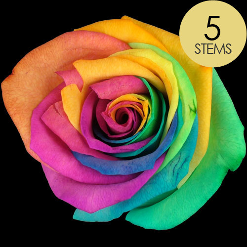 Send 5 happy roses buy 5 happy roses post 5 happy roses for Buy black and blue roses