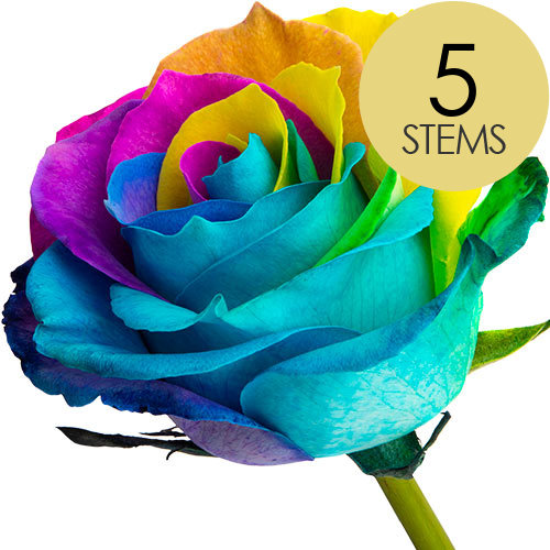 Image of 5 Classic Happy Roses