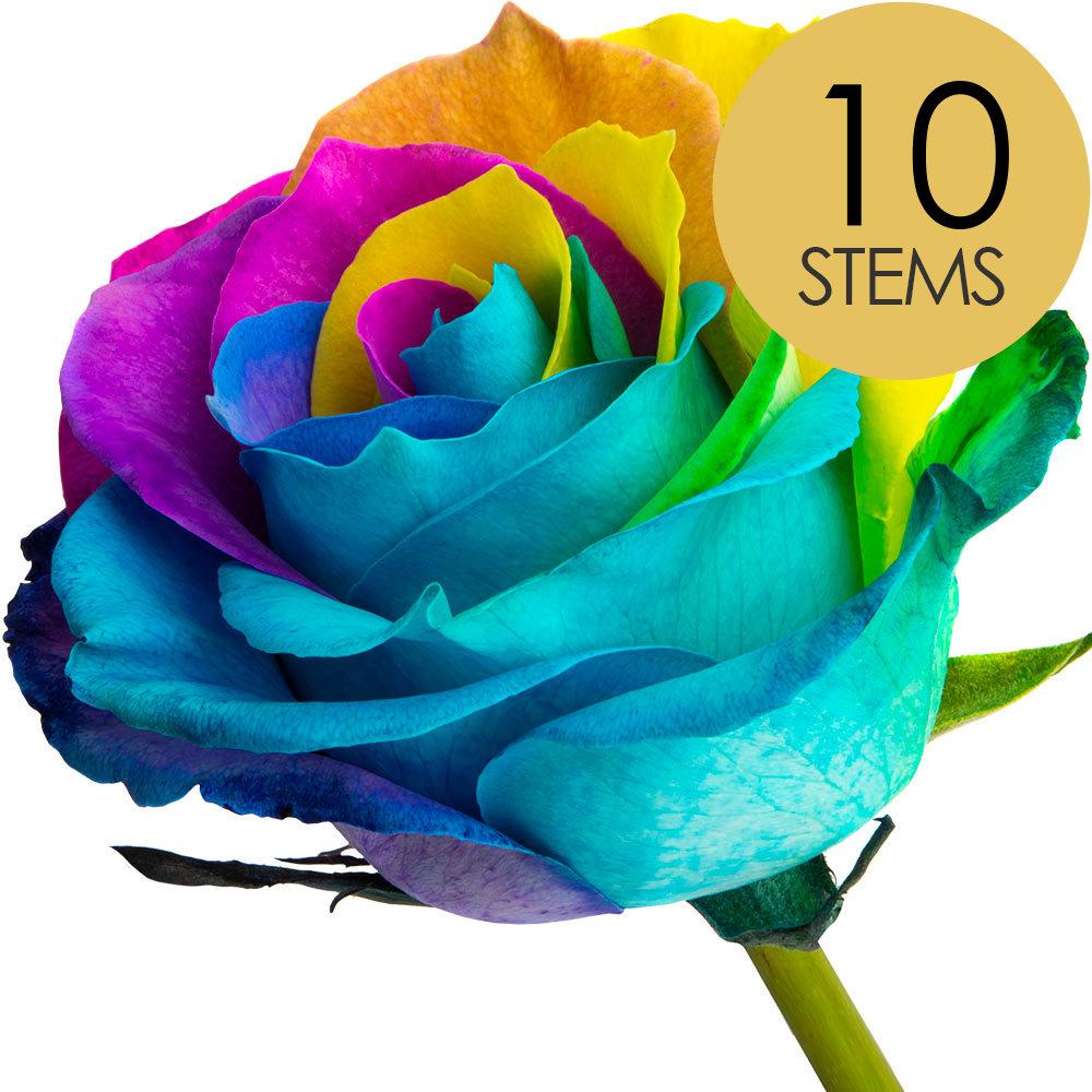 10 Happy Roses