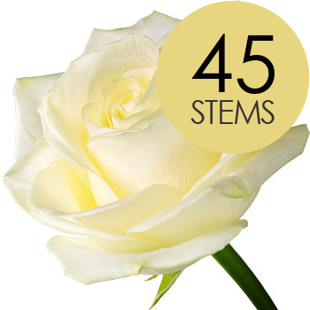 Click to view product details and reviews for 45 White Roses.