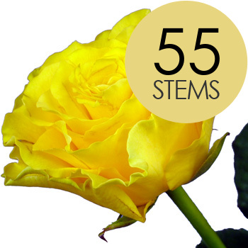 55 Yellow Roses